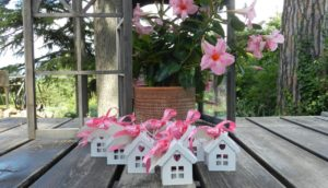 Villaggio di Casettine Porta-TeaLight confezione Rosa Fragola