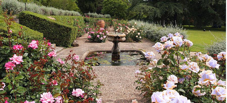blog-roseto-parco-botanico