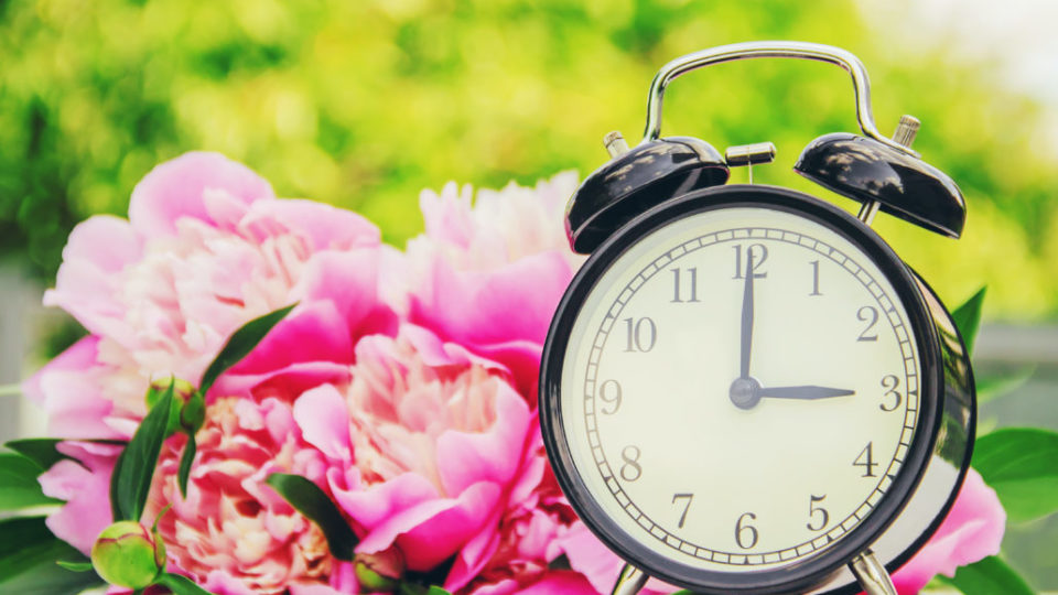Spring flowers and Alarm Clock. Change the time.