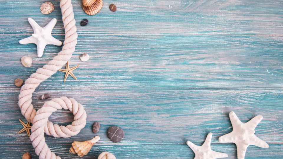 Seashells and sea decorations with rope